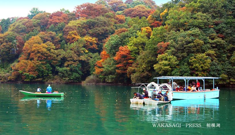 <b>相模湖</b>ワカサギ釣り情報 わかさぎ釣りドーム船 天狗岩五宝亭(神奈川)