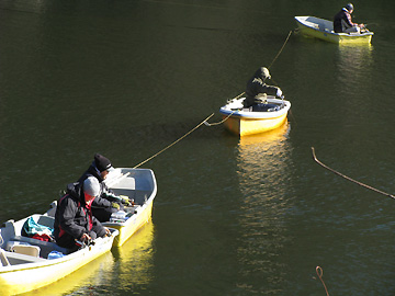 鮎川 湖 ワカサギ 釣り